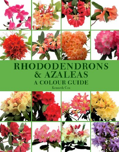 rhododendrons-and-azaleas-a-colour-guide-by-kenneth-cox-2005-11-25