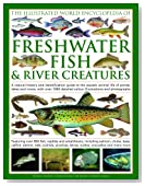 The Illustrated World Encyclopedia of Freshwater Fish & River Creatures: A Natural History and Identification Guide to the Animal Life of Ponds, Lakes ... 1000 Detailed Illustrations and Photographs