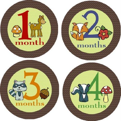 Woodland Creatures Monthly Baby Bodysuit Stickers