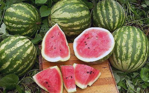 Crimson Sweet Watermelon Seeds - Non-Gmo - Combine Shipping