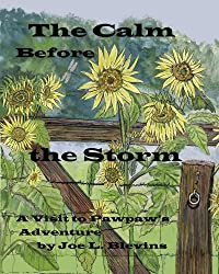 The Calm Before the Storm (A Visit to Pawpaw's Book 6)