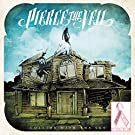 Collide With The Sky [Picture Disc][VINYL]