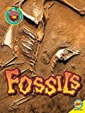 img - for Fossils (Focus on Earth Science) by Megan Lappi (2015-07-15) book / textbook / text book