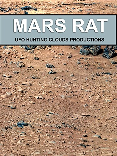 Mars Rat Photographed by Mars Curiosity Rover!