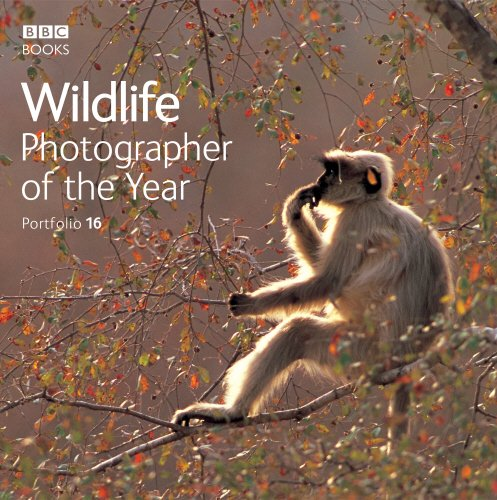 Wildlife Photographer of the Year Portfolio 16 (Photography)