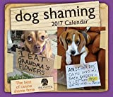 img - for Dog Shaming 2017 Day-to-Day Calendar book / textbook / text book