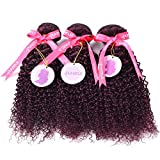 Punzel's 100% Brazilian Human Hair Extensions 99j Curly Wave Bundles 3pcs/Lot
