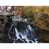 Brewster UMB91033 96-Inch by 126-Inch Autumn Waterfall Wall Mural
