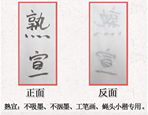 Megrez Chinese Watercolor Practice Chinese Japanese Calligraphy Writing Sumi Drawing Xuan Rice Paper Thickening without Grids 100 Sheets/Set - 50 x 100 cm (19.68 x 39.37 inch), Shu Xuan (Color: Shu Xuan, Tamaño: 50 x 100 cm (19.68 x 39.37 inch))
