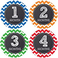 Pinkie Penguin Baby Monthly Stickers - Baby Boy - 1-12 Months - Milestone Onesie Stickers