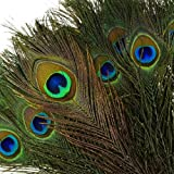 "Pack of 100pcs High Quality Real Natural Peacock Feathers (10""-12"") with Kare & Kind® retail packaging"