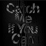 Catch me if you can (通常盤)(DVD付)