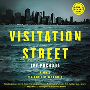 Visitation Street: A Novel | [Ivy Pochoda]