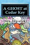 A Ghost At Cedar Key