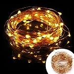 LE� Copper Wire Lights, Waterproof 10...