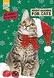 Pawsley Cat Advent Calendar
