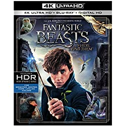 Fantastic Beasts and Where to Find Them [4K Ultra HD + Blu-ray]