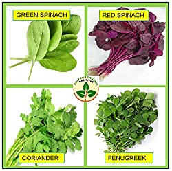 Only For Organic ! Combo Of Leafy Vegetable (Four Varieties : 150 Quantity Each) !