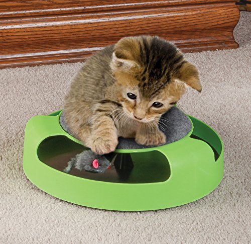 Cat Toy With Rotating Mouse Kitten Toy Spinning Mouse Rotates 360° With Scratch Pad