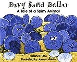 Davy Sand Dollar