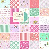 Moda Posy Charm Pack, Set of 42 5-inch-by-5-inch Precut Cotton Fabric Squares