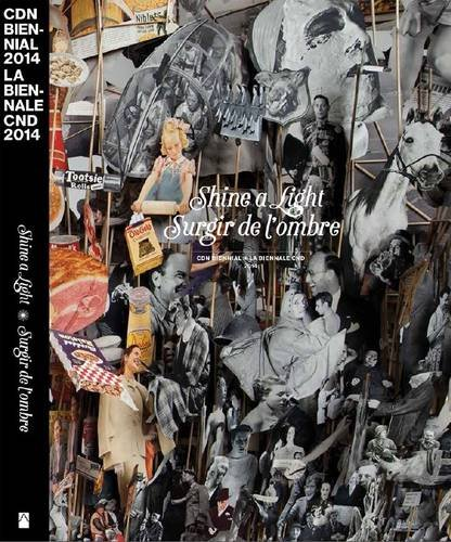 Shine a Light: Canadian Biennial 2014