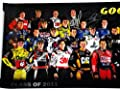 *36X AUTOGRAPHED* Class of 2011 Goodyear SIGNED NASCAR Driver Group Photo 11X33 Poster w/ COA (Dale Jr, Jeff Gordon, Tony Stewart, Jimmie Johnson, Kyle Busch, and Many More!)