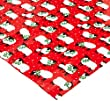 Caspari Festive Flock Continuous Gift Wrapping Paper Roll, 8-Feet, Red
