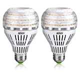 200-150 Watt Equivalent A21 22W LED Light Bulbs-3000 lumens 3000K Warm White, CRI 80+, E26 Medium Screw Base, Non-dimmable Ceramic Bulbs for Home Lighting, SANSI (2 Pack) (Color: 3000k Soft Warm)