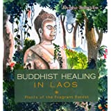 Buddhist Healing in Laos: The Fragrant Forestby Denise Tomecko