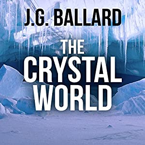 The Crystal World Hörbuch