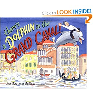 There's a Dolphin in the Grand Canal