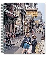 DR-14 NEW YORK