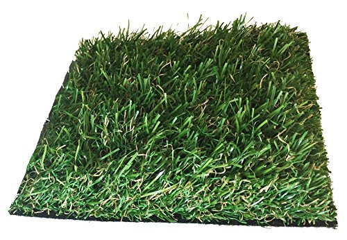 Desertcart Ae All Turf Mats Buy All Turf Mats Products