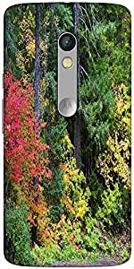 Snoogg Autumn Forest Background Solid Snap On - Back Cover All Around Protect...