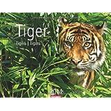 Tiger 2014
