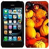 Apple iPhone 5 & 5S Thanksgiving Cornucopia Phone Case Cover