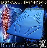 バリ硬!BluebloodボディコアマットTATAMI/ブルーブラッド/畳/高反発