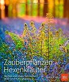 Zauberpflanzen Hexenkräuter: Mythos und Magie heimischer Wild- und Kulturpflanzen