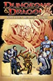 img - for Dungeons & Dragons: Forgotten Realms Classics Volume 3 (Dungeons & Dragons (Idw Quality Paper)) book / textbook / text book
