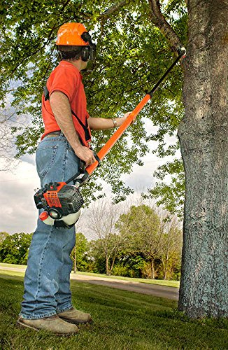 ECHO 25.4cc 9-12Ft Extend (Echo Gas Pole Saw compare prices)