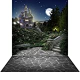 Princess Backdrop with Floor - Castle Terrace - 10x20 Ft. High Quality Seamless Fabric