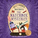 The Matchbox Mysteries: Wings & Co 4 | Sally Gardner