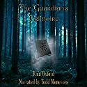 The Guardian's Grimoire: The Guardian Series, Book 1 (       UNABRIDGED) by Rain Oxford Narrated by Todd Menesses