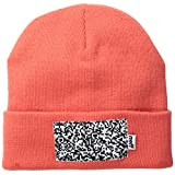 neff Men's Picto Beanie