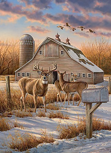 Rural Route, A 1000 Piece Jigsaw Puzzle By Cobble Hill