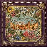 Pretty. Odd. (Deluxe)