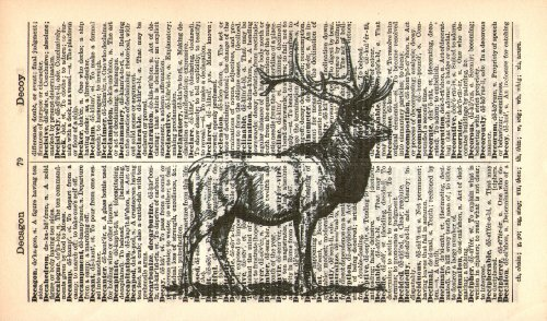 FULL STAG - WILDLIFE - DEER PRINT - Art Print - Vintage Dictionary Art Print - Illustration - Wall Hanging 55A