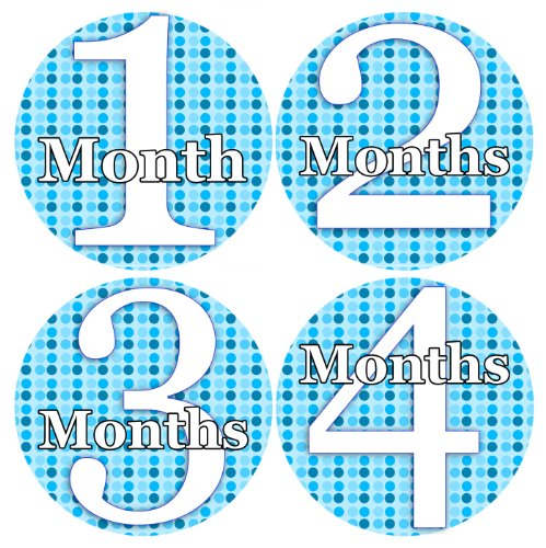 BLUE WHITE POLKA DOTS Baby Month By Month Stickers - Baby Month Onesie Stickers Baby Shower Gift Photo Shower Stickers, baby boy