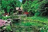 1000ピース 水の生まれる里-白川水源 10-629
